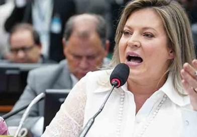 Ex-braço direito de Bolsonaro,  Joice Hasselmann será ouvida na CPI da Fake News
