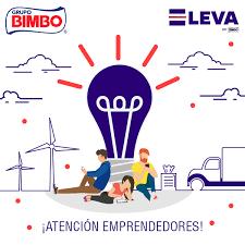 Bimbo_Startups