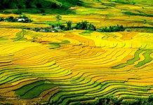 Circuito turístico no Vietname