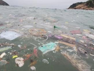 Oceana convoca a los ciudadanos a exigir la legislación de plásticos