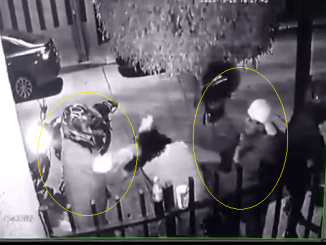 Pareja es asaltada en las afueras de su domicilio #VIDEO