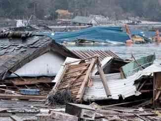 Millones de personas han muerto por desastres naturales, ¿cómo reducir riesgo?