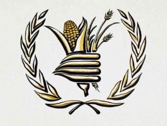 El Premio Nobel de la Paz es para el Programa Mundial de Alimentos de la ONU #VIDEO