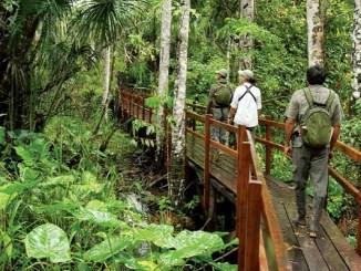La oportunidad del turismo sustentable tras la pandemia