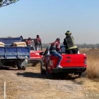 Alertan sobre el escape de cuatro leones en Zumpango