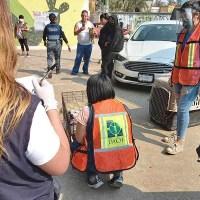Rescatan a 26 perritos de supuesta asociación protectora, en Iztapalapa #VIDEO