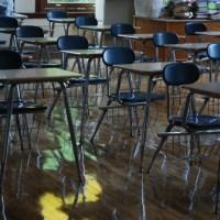 Buscó tomar clases en línea y descubrió que su profesor estaba muerto