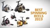 best spinning reels 2019