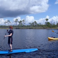 Cool Paddle Boarding images