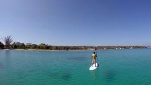 Jamacian Paddle Board - 3