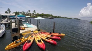 Paddles By The Sea Launch Site