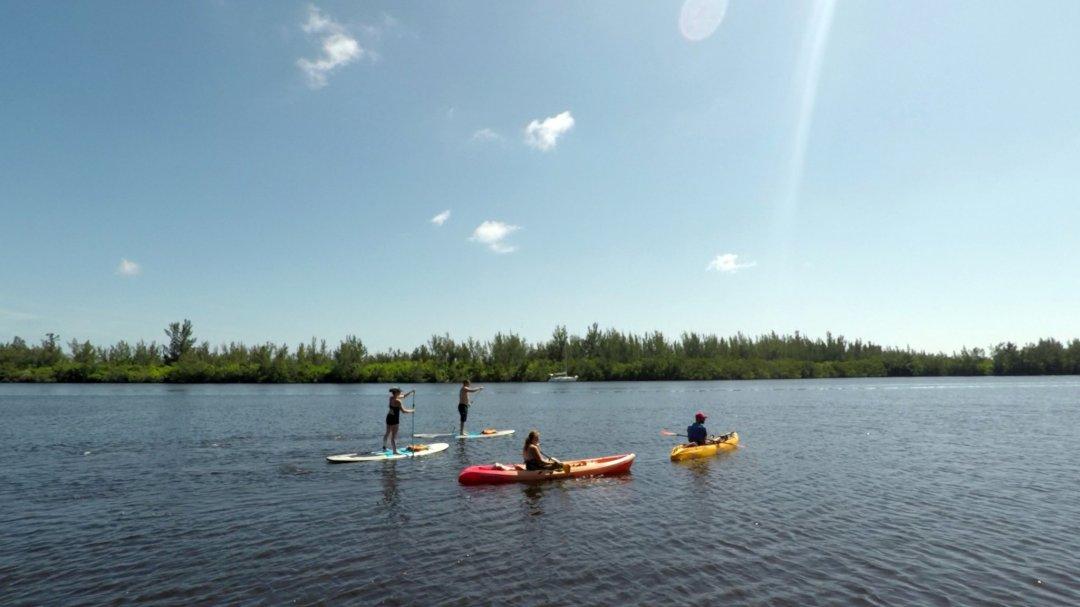 Kayak & paddle board tour vero