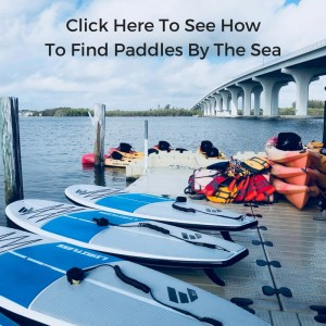 How To Find Paddles By The Sea