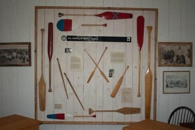 Paddles of Walter Caribou