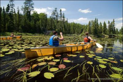 Paddling on the Kelso River through lily pads. Boundary Waters Canoe Area Wilderness, MN.