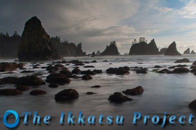 the ikkatsu project