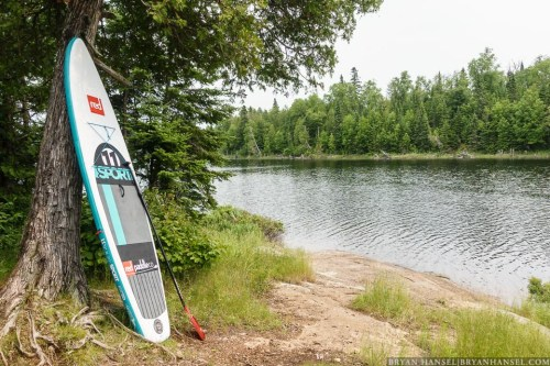 SUP against a tree in the BWCA