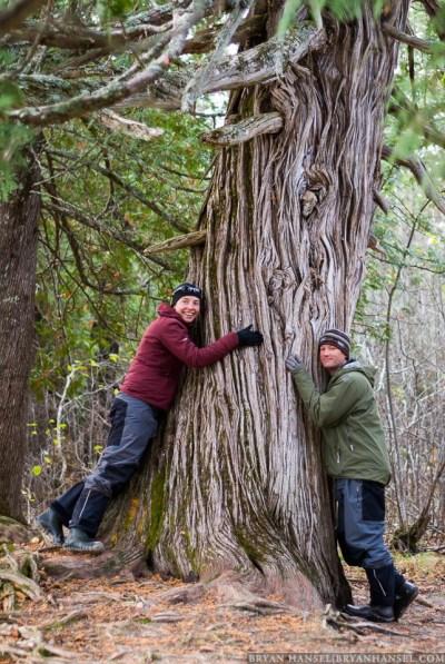 Dave and Amy Freeman hug a tree.