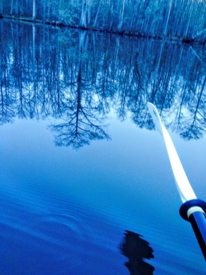 kayak the roanoke river