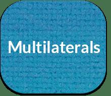 Multilaterals