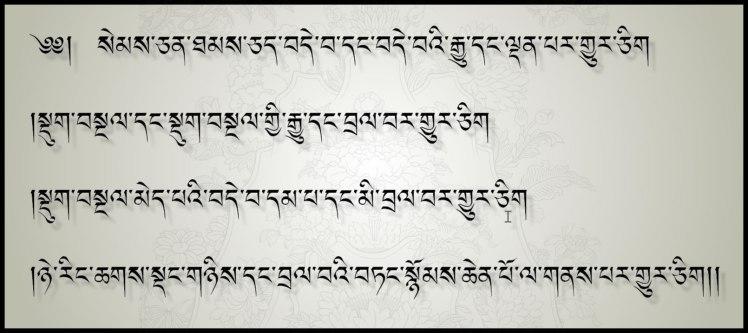 The Four Immesurables in Tibetan