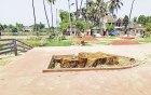 পুঠিয়া রাজবাড়ির সৌন্দর্য বাড়ানোর নামে শতবর্ষী বৃক্ষ নিধন