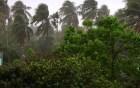 রাজশাহীসহ সারা দেশে কালবৈশাখীর আভাস