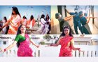 'নয়া জামাই' নিয়ে নয়া চাঞ্চল্য