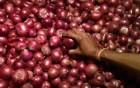 বাড়তে পারে পেঁয়াজের দাম , আগাম ব্যবস্থা নিচ্ছে ভারত