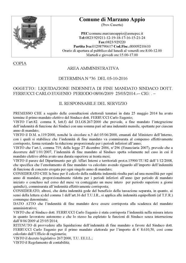 determina_n_36_pagina_1