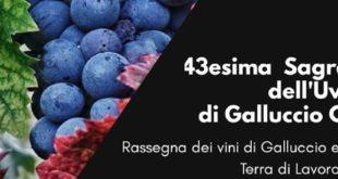 GALLUCCIO – Sagra dell'uva, giovedì la presentazione della 43esima edizione