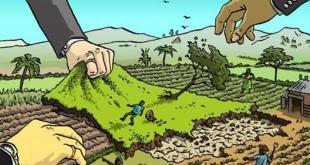 Immigrazione  – Le vere ragioni dell'esodo. Tante le nostre colpe: rubiamo loro la terra e poi speriamo affoghino in mare