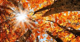 PRATELLA – Equinozio di autunno, la tradizione strizza l'occhio all'innovazione