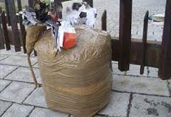 Riardo – Bomba artigianale nel cortile di casa Ruggiero, era stata anche innescata. Indagano i carabinieri
