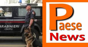 Caserta – Spaccio di dorga, arrestato 41enne