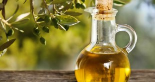Sessa Aurunca – Festival dell'Olio: la Pro Loco Sancti Caroli celebra uno dei prodotti tipici locali