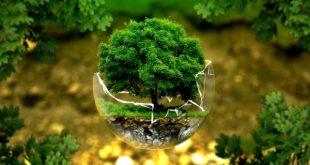 TEANO – Tutela dell'ambiente, il vescovo Cirulli: bisogna vigilare