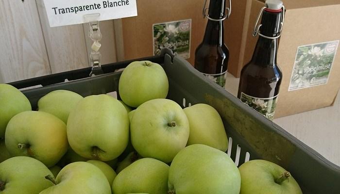 Årets första äpplen är här