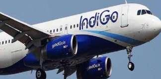 page3news-indigo_flight