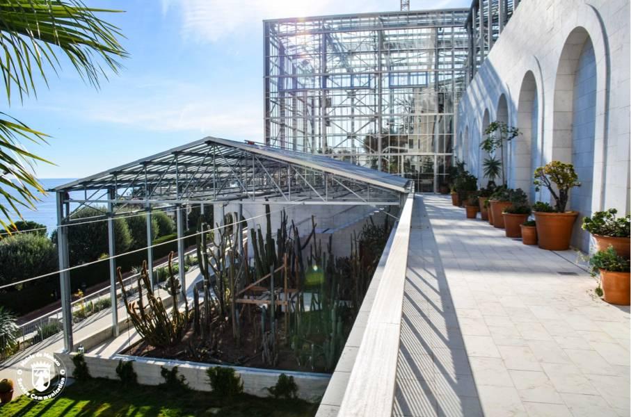 Réouverture du Centre Botanique du Jardin Exotique et de La Vidéothèque-Sonothèque