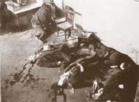 Foto de la matanza