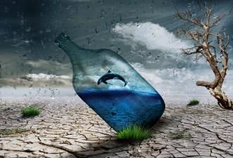botella en el mar actividad pasados español