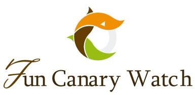 Fun Canary Wacth