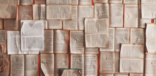 L'esperienza del paese e della lingua altrui. I casi di Ornela Vorpsi e Jhumpa Lahiri
