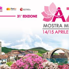 Festa Azalea Borgo a Mozzano