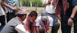 ग्रामिण सुधार सामुदायिक वनले ११ हजार विरुवा रोप्ने