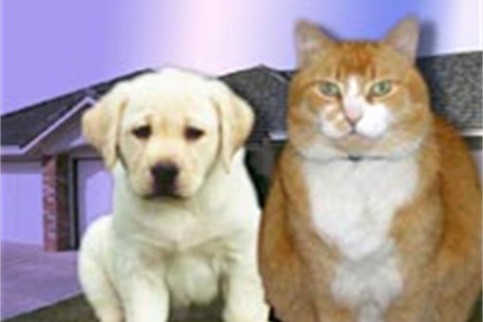 Walk for the Animals Raises Money for SPCA_-3538097039930406178