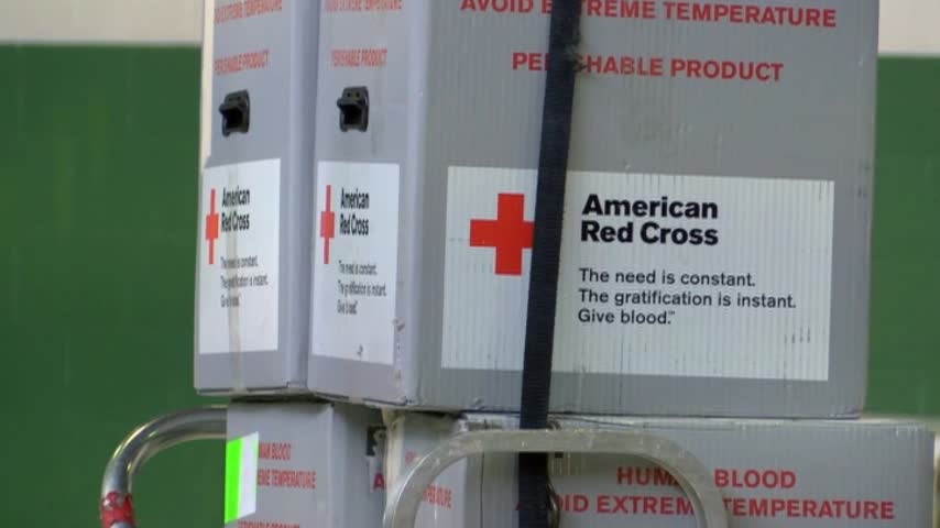 Red Cross 100 Days_20160621235709