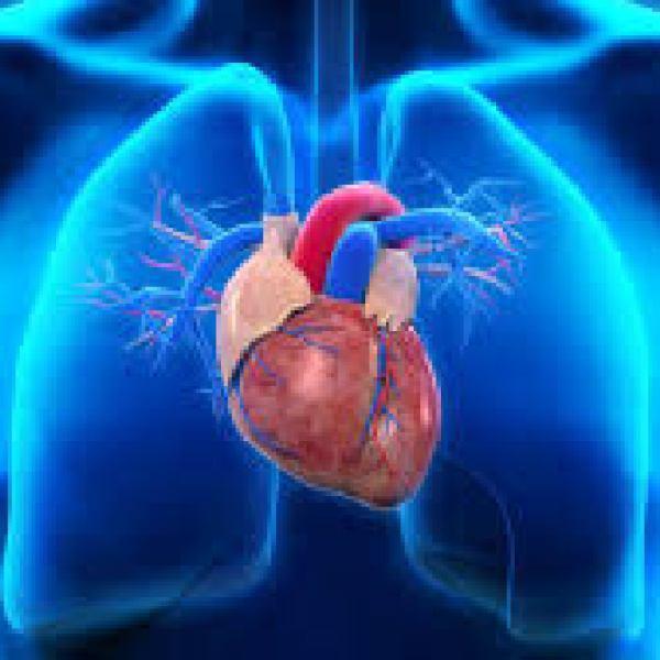 Heart Attack Awareness_1482445732625.jpg