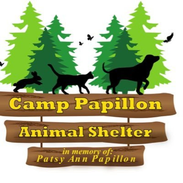 camp papillion_1504568645580.jpg